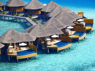 Hotel Bookings  Online